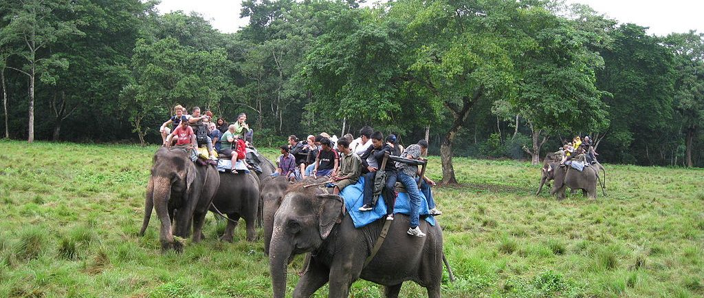 nepal-family-tour-elephant-back-safari-in-chitwan