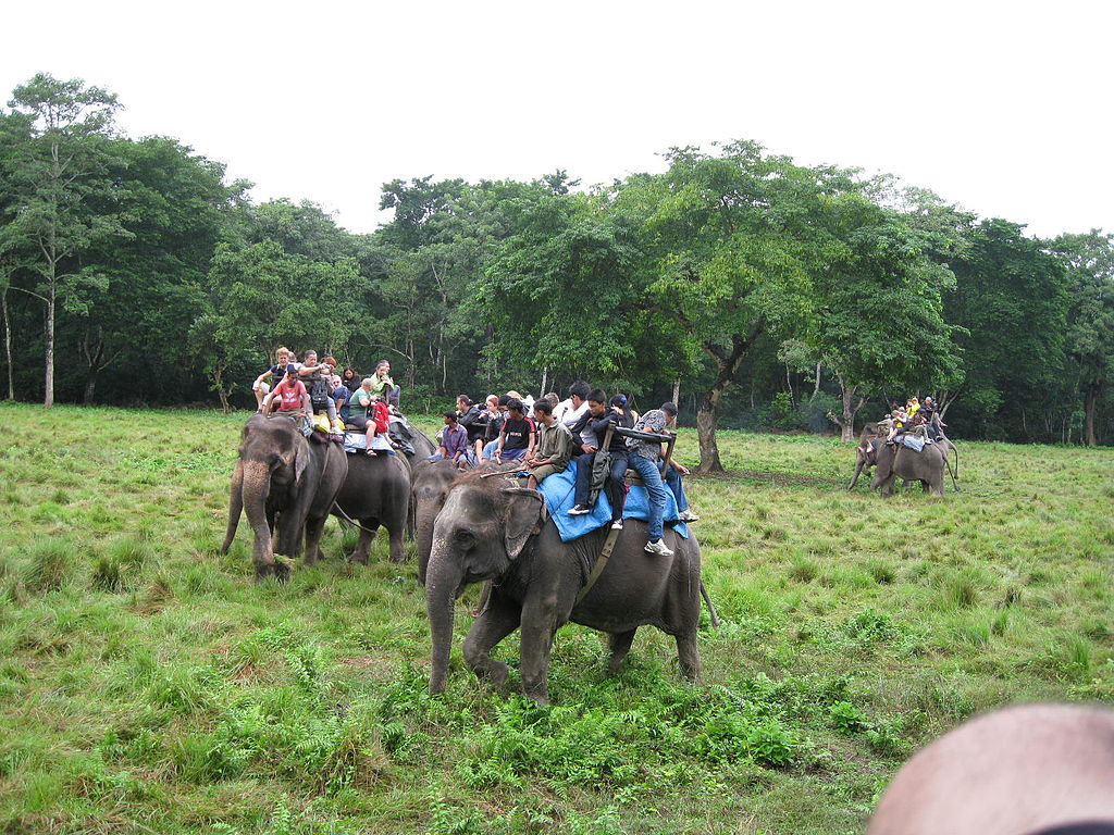 6 Days Nepal Travel: Nepal Jungle Safari Tour