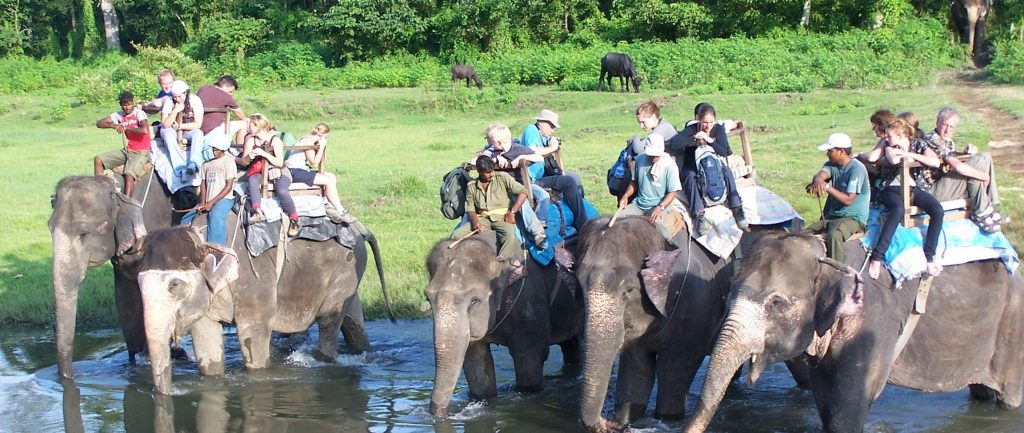 nepal-adventure-travel-elephant-safari-chitwan