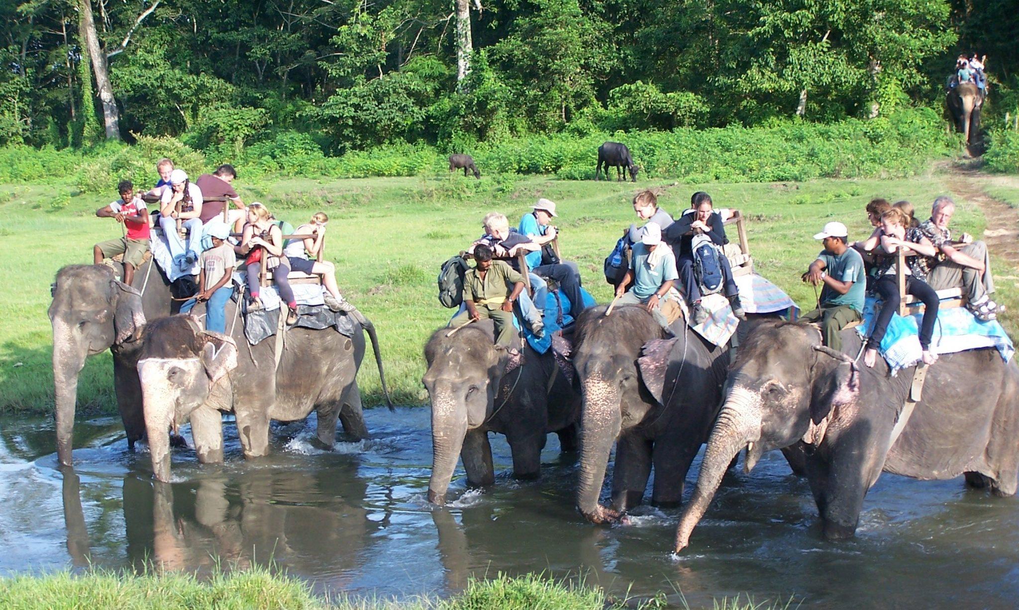 nepal-adventure-travel-elephant-safari-chitwan