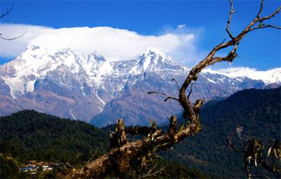 Australian Base Camp Trek Nepal