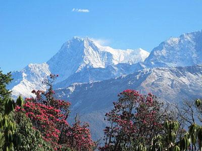 Ghandruk Poon Hill Trek